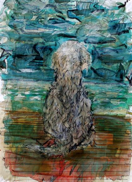 andrew wilson salty dog